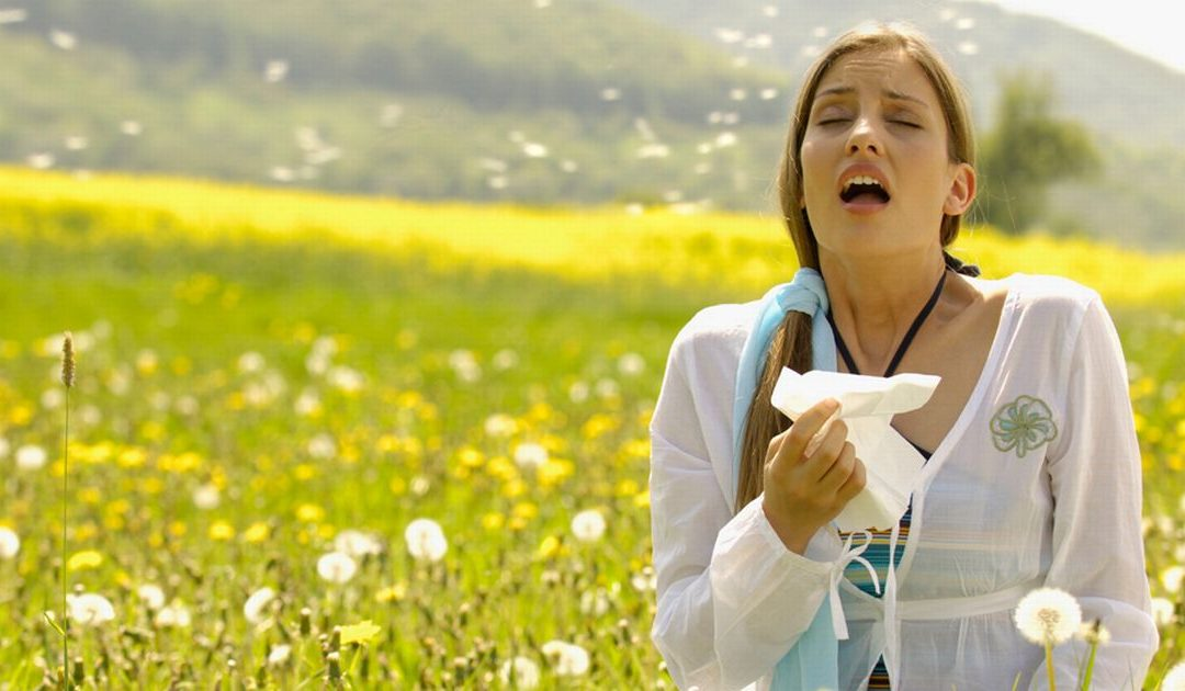 ¿Qué es la alergia? Y como detectar los sintomas