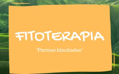 Fitoterapia: castaño de indias y vellosilla