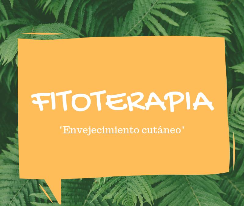 Fitoterapia: aceite de borraja y resveratrol