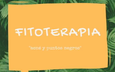 Fitoterapia: Bardana